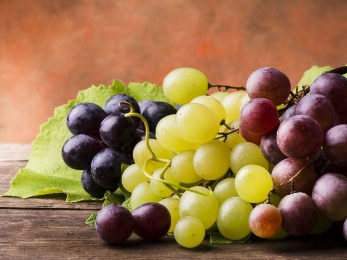 white grapes red grapes black grapes